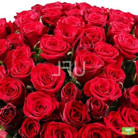 1000 роза!