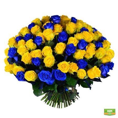101 желто-синяя роза