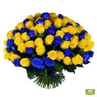 букет из 101 розы, сине-желтый букет