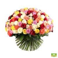 175 разноцветных роз