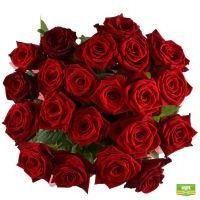 21 роза Винница