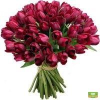 Заказать букет «49 тюльпанов» в интернет-магазине Флора2000.ру. Доставка!