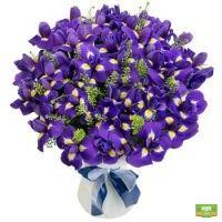Заказать букет «Из 49 ирисов» в интернет-магазине Флора2000.ру. Доставка!