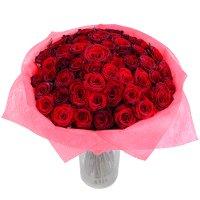 51 короткая красная роза 50см