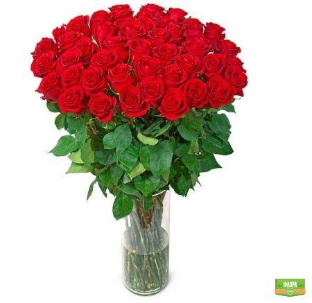Букет «Роскошный» (51 роза, 1 метр)