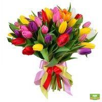 Заказать 51 разноцветный тюльпан с доставкой
