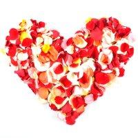 Лепестки разноцветных роз.