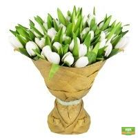 Заказать букет белоснежных тюльпанов в интернет-магазине Флора2000.ру. Доставка!