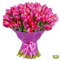 Заказать роскошный букет тюльпанов в интернет-магазине Флора2000.ру. Доставка!