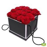 Элегантность роз