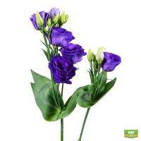 Фиолетовые эустомы поштучно