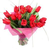 Заказать очаровательный букет красных тюльпанов в интернет-магазине с доставкой