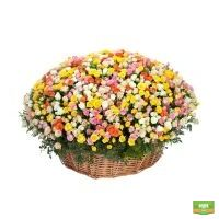 Заказать цветочную корзину с доставкой в любой город