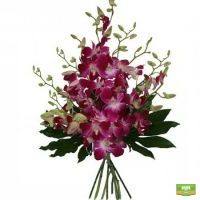 Купить букет цветов «Пурпурная экзотика» с доставкой