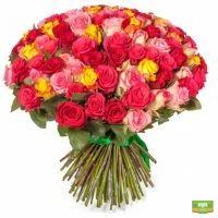 Разноцветные розы 101 шт