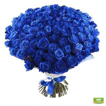 Синие розы VIP