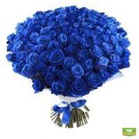 101 синяя роза VIP класса с доставкой