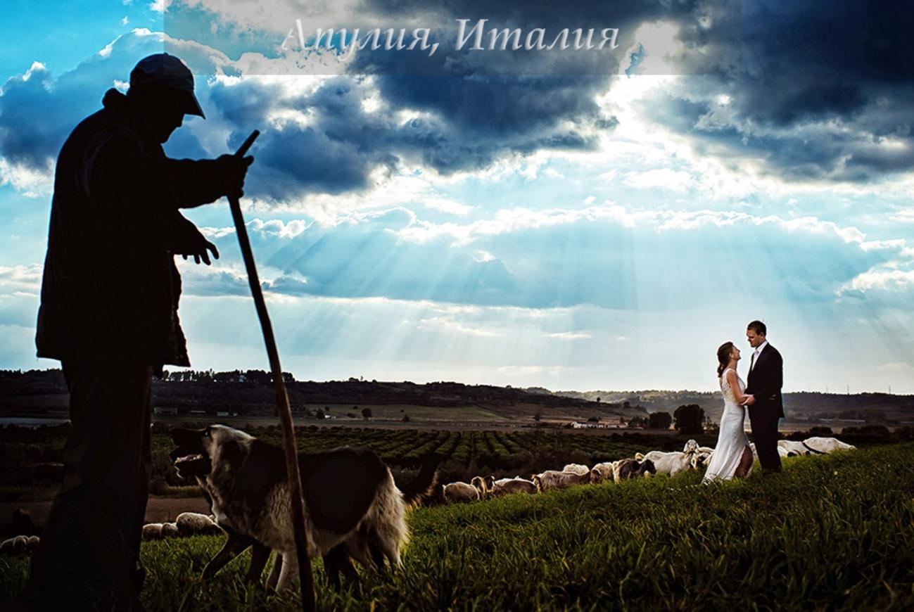 Свадебное фото Пуглиа
