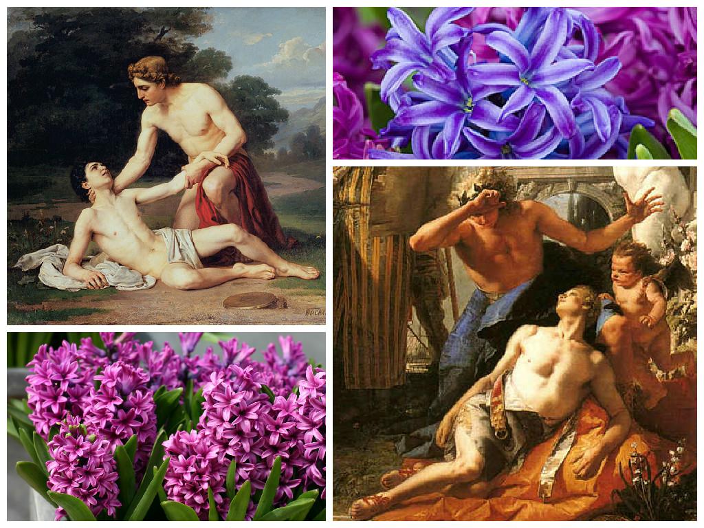 миф древней греции гиацинт картинки время красоты
