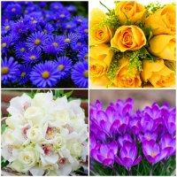 Что означает количество цветов в букете?