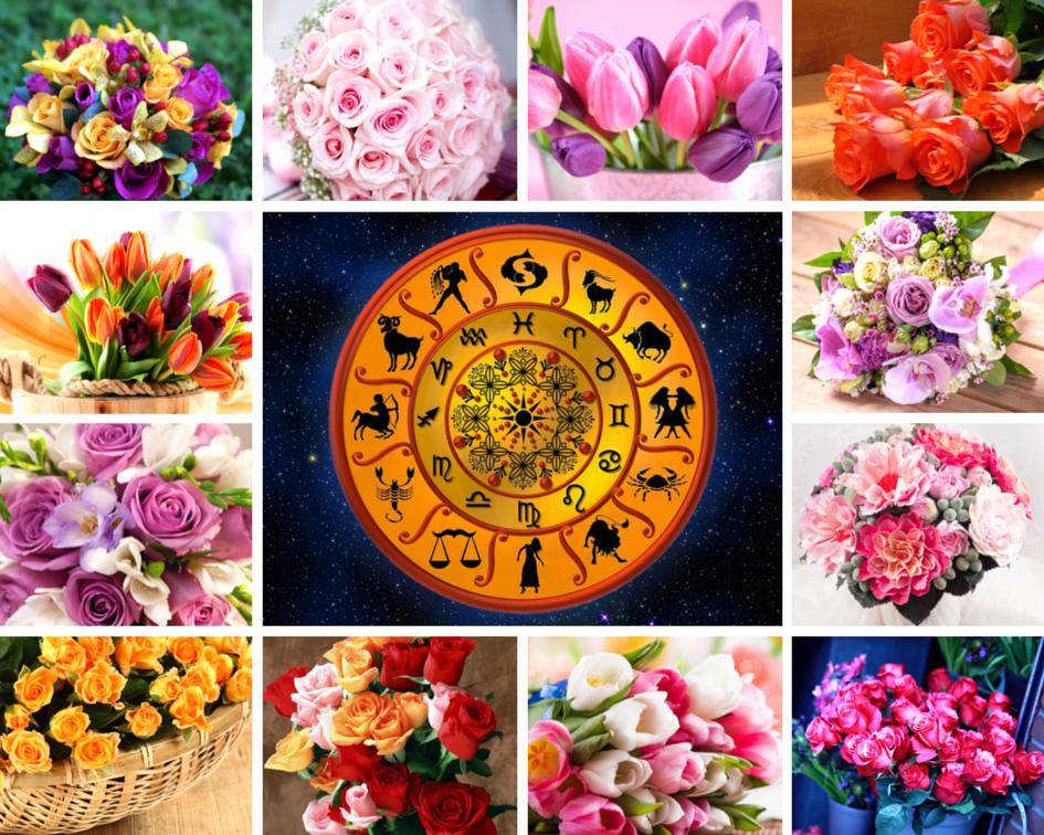 гороскоп знаки цветы