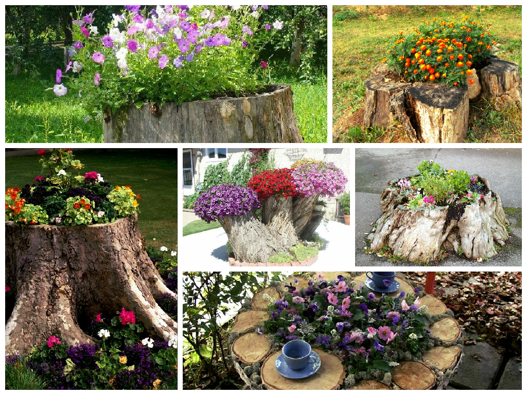 Декор пня в саду