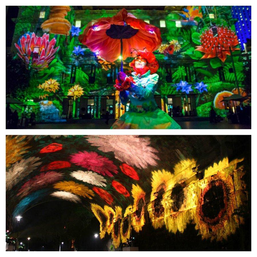 Удивительный фестиваль в Австралии «Vivid Sydney»