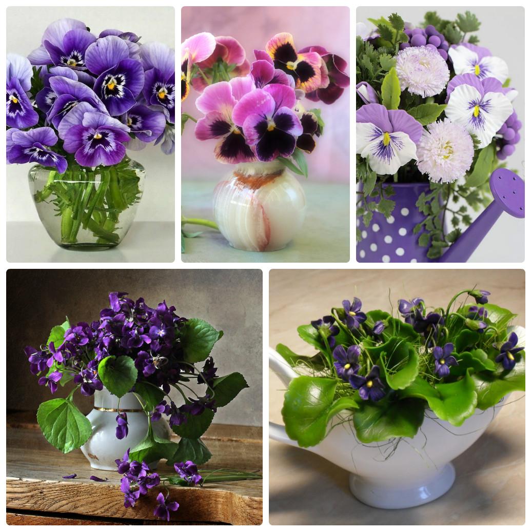 букет цветов фото фиалки год единственный день