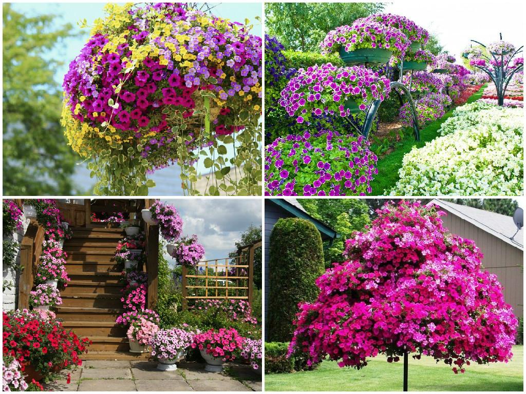 Как украсить сад своими руками все фото