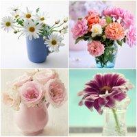 Как дольше сохранить цветы?