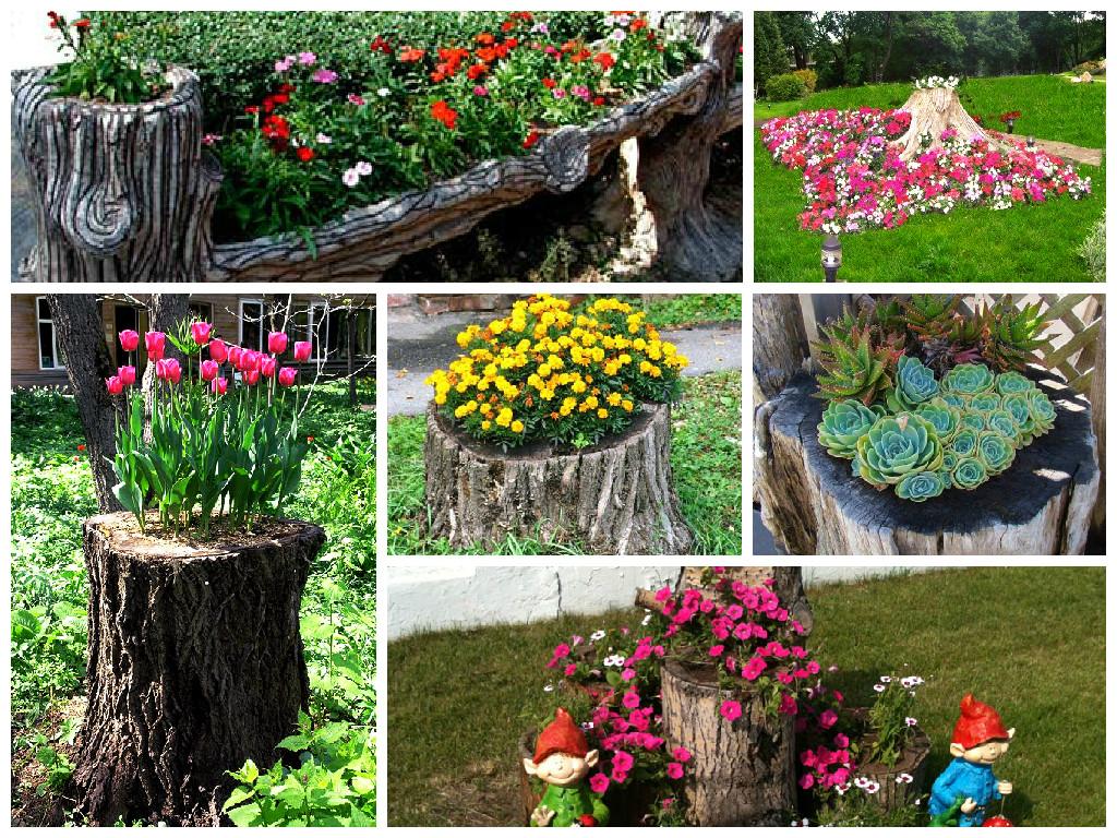 Как украсить пень в саду