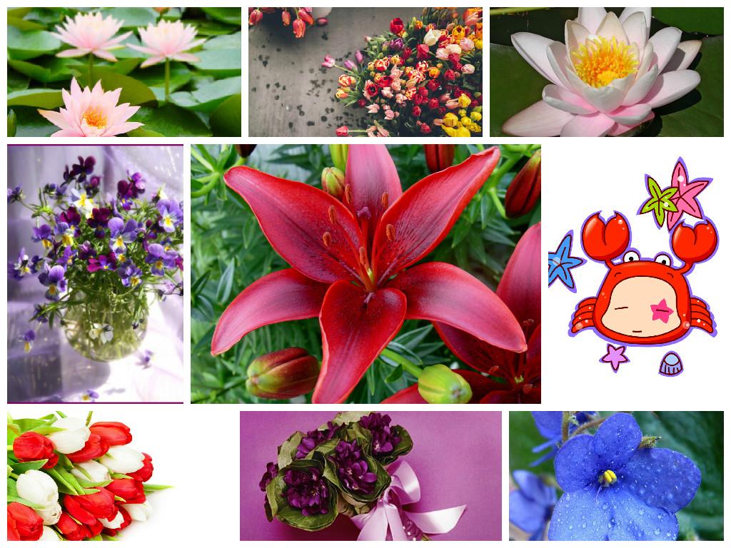 Купить цветы для женщины девы