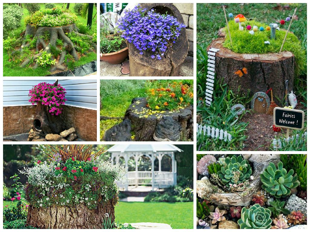 Пень с цветами в саду