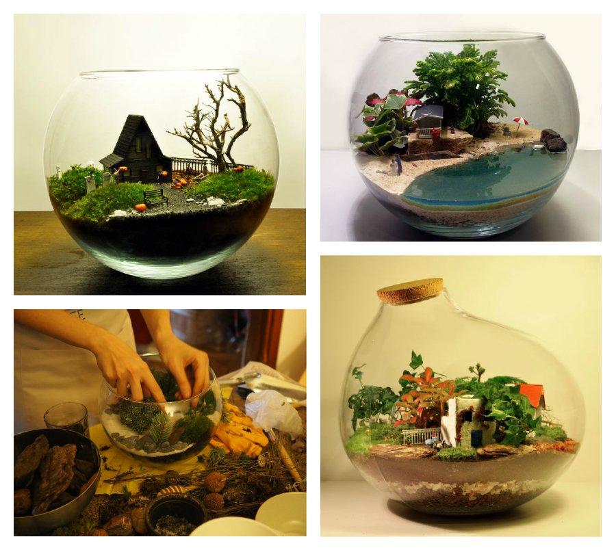 Сад в стеклянной вазе своими руками