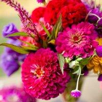 Какие цветы цветут в конце августа