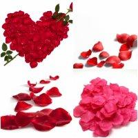 Секреты того, как сохранить лепестки роз свежими